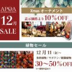 APOA12月セール情報